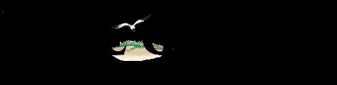 Cape Gazette Logo